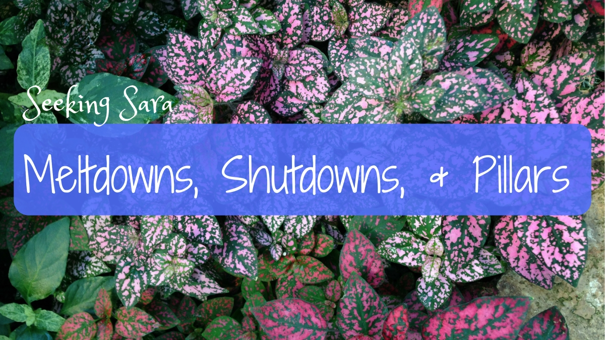 Video: Meltdowns & Shutdowns