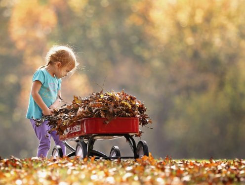 The image in Elyana's example. A young blonde girl in brightly colored clothing collecting autumn leaves in her shiny red wagon.